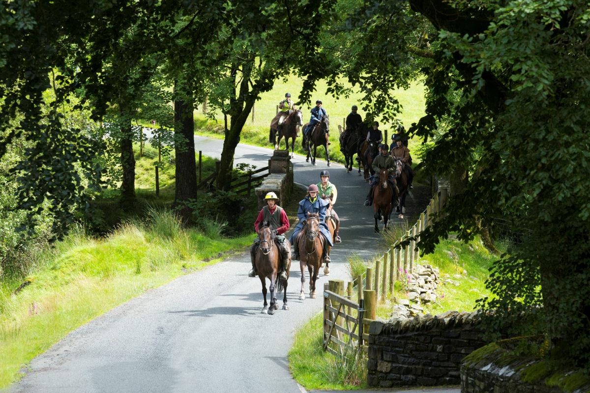 Pony Trekking West Wales ©Janet Baxter