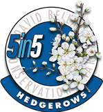 Hedgerows Award 2019-2020